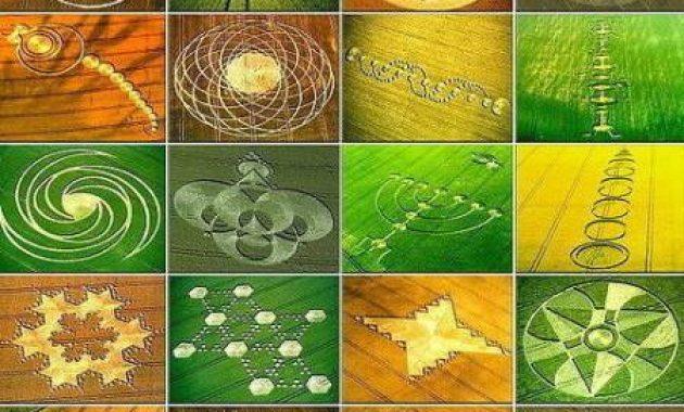 Kumpulan Gambar Terjadinya Crop Circle Lainnya di Dunia