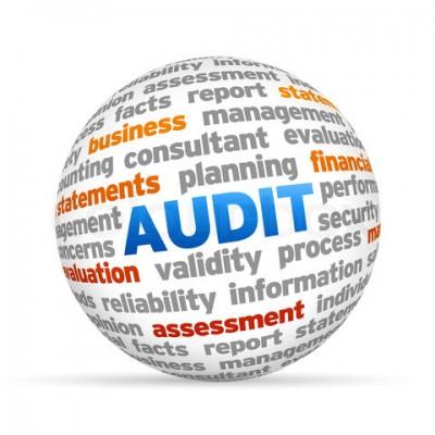 Pengertian, Fungsi dan Definisi Audit Sumber Daya Manusia