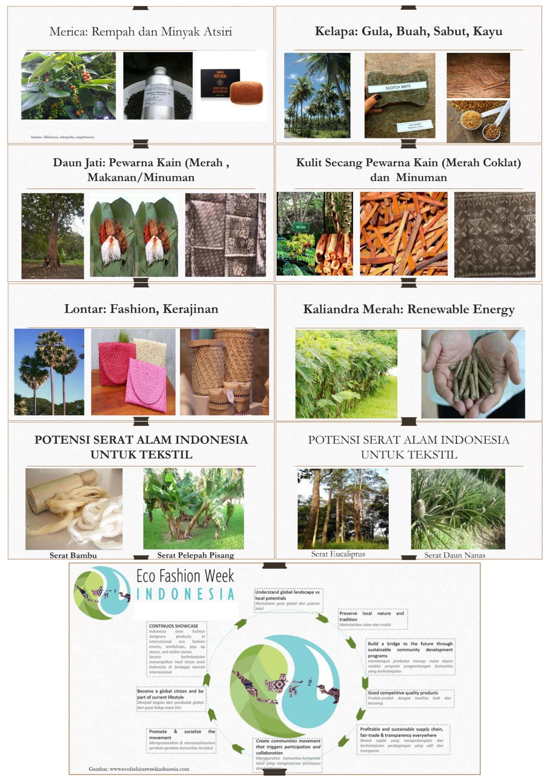 Sumber Pewarna Alami, Bahan Kerajinan, Makanan dan Miyak Atsiri